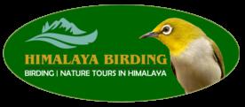 Himalaya Birding