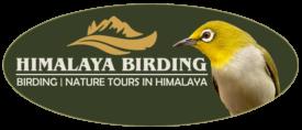 Birding Himalaya Logo
